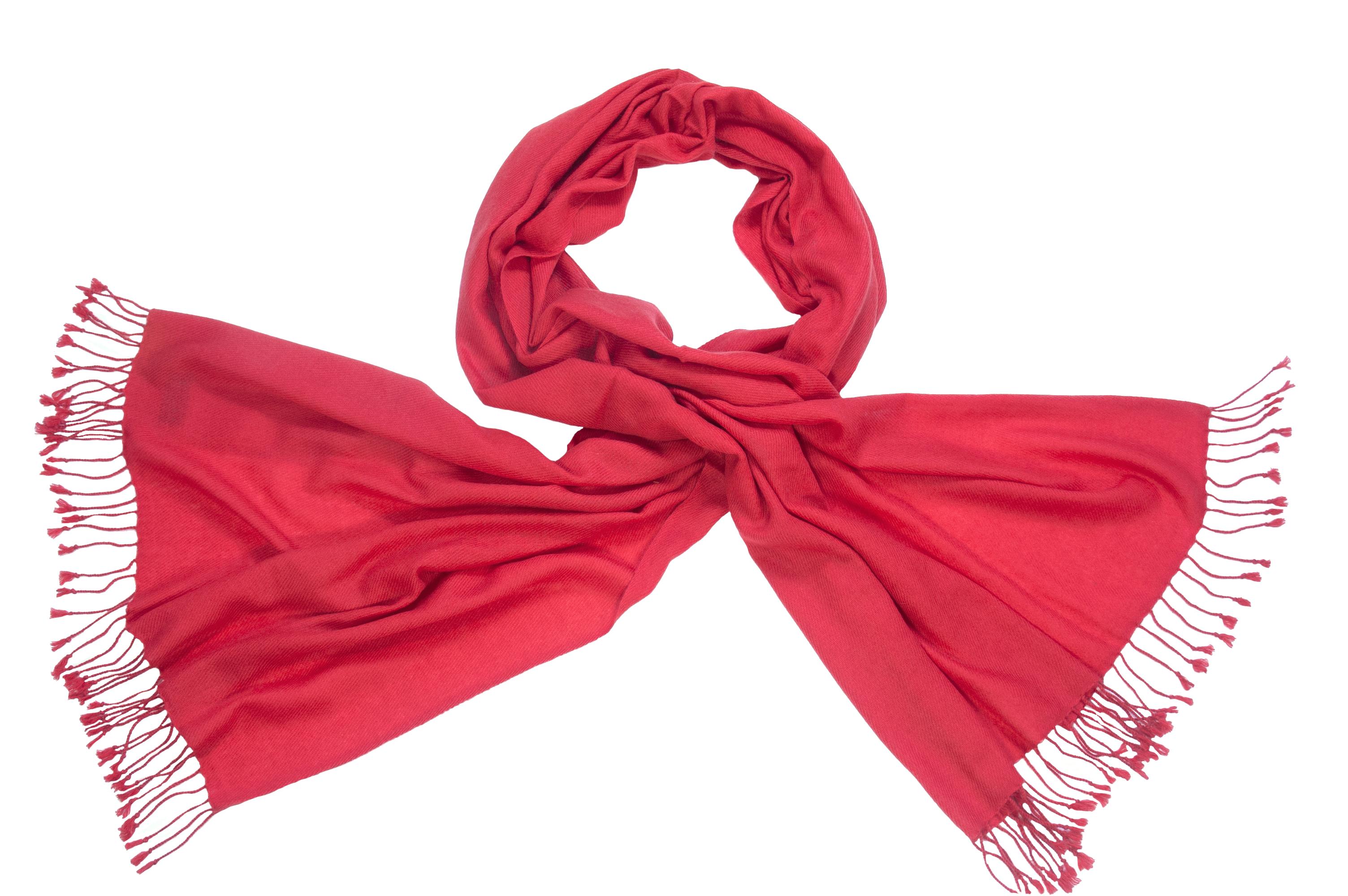 Pashmina shawl samba