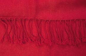 Pashmina shawl samba - close up