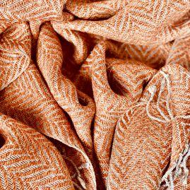Oranje visgraat uit Cambodja